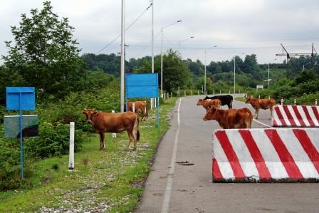 Welcome to Zugdidi